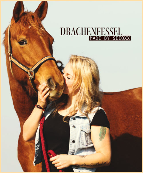 Armband Drachenfessel Pferdeliebhaberin